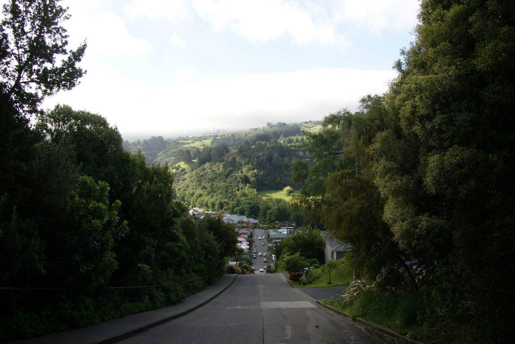 Baldwin street: the world's steepest street